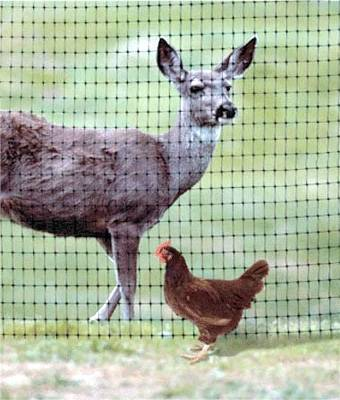 Hot sale plastic deer fence net/ deer fence/ deer net