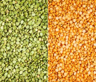 Grade A Yellow Split pea, Best quality and Price