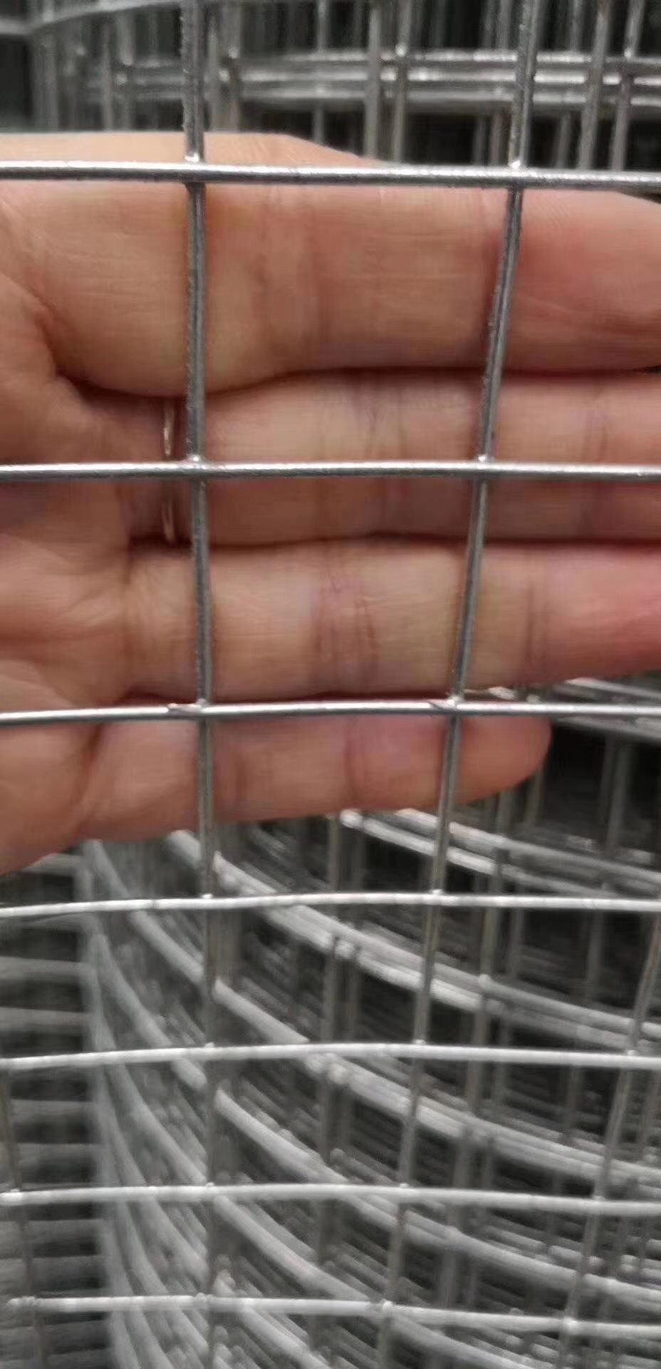 Hot sale stainless steel wire mesh welded wire mesh