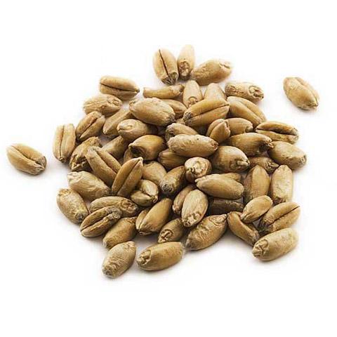 Wheat class 4