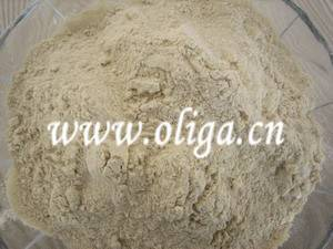 Wheat Gluten for Food Additives