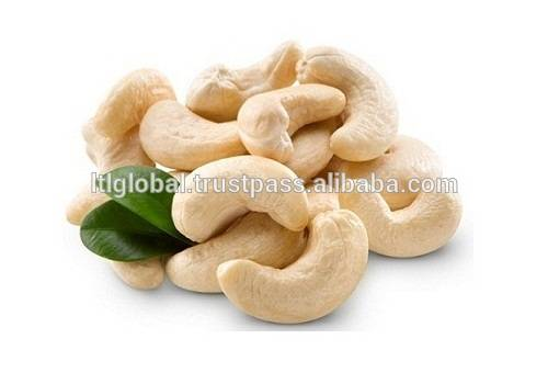 CASHEW NUT WHITE WW320/ WW240/ WW180 WITH BEST PRICE
