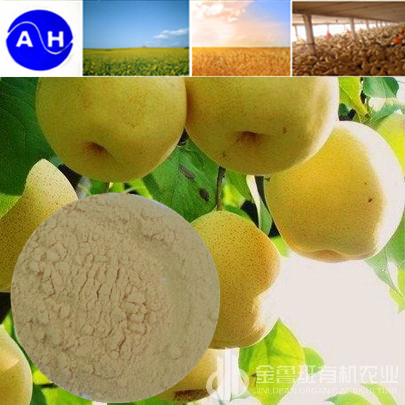 Calcium Amino Acid Chelate Fertilizer