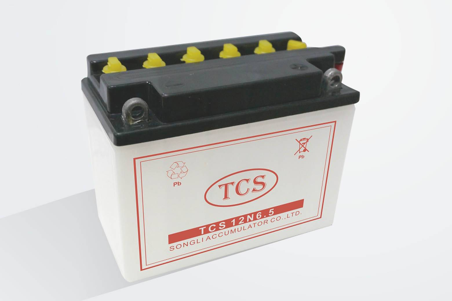 Dry charged  conventional lead acid battery