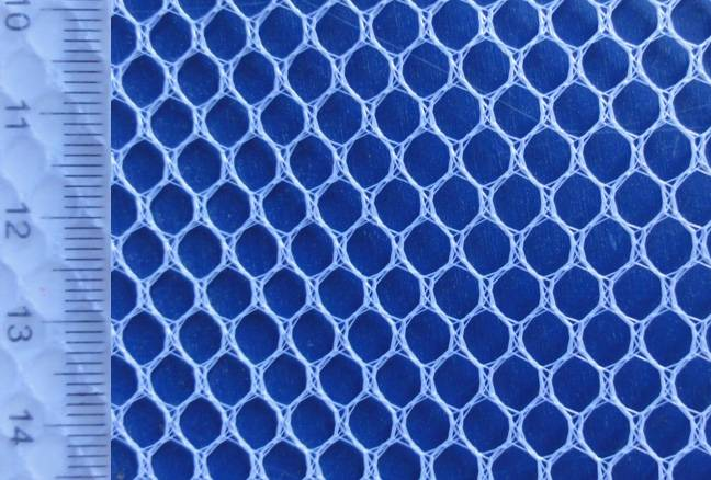 100% eye bird polyester net fabric