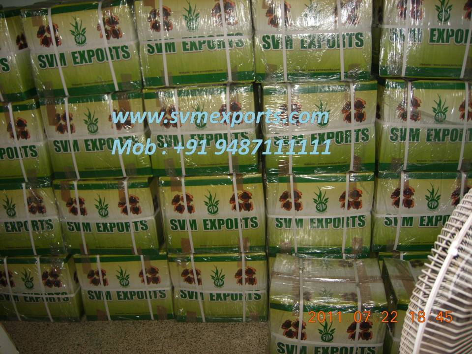 Moringa oliefera leaf powder