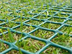 Plastic grass netting protect slope water and soil erosion