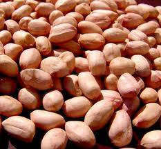 Vietnam exported peanuts