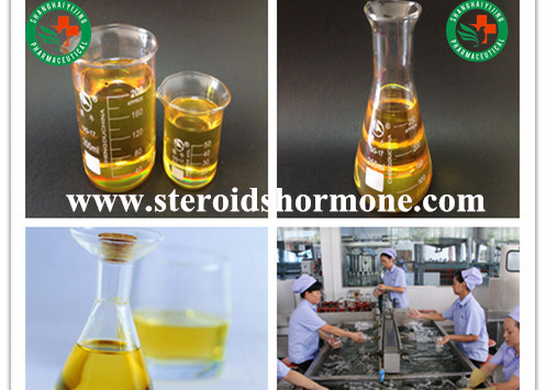 Deca-Durabolin/Nandrolone Decanoate Body Protein Enhancement Injectable Anabolic Steroid