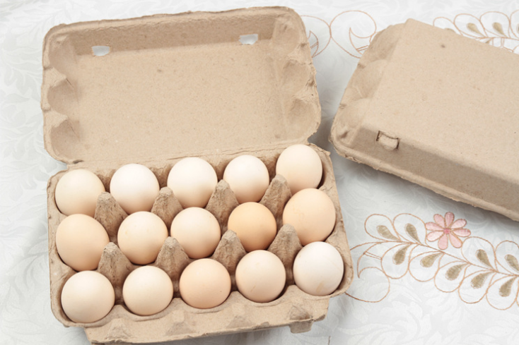 Wholesale Customized Pulp Egg Tray