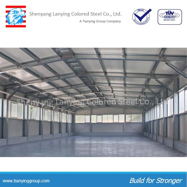 professional design steel structure warehouse for sale
