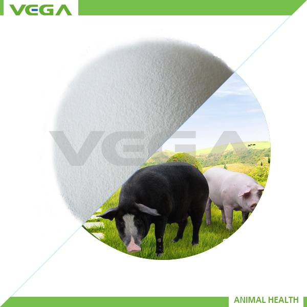 Vitamin B1 Mono for Feed additives,China manufacturer API Vitamin B1 hcl