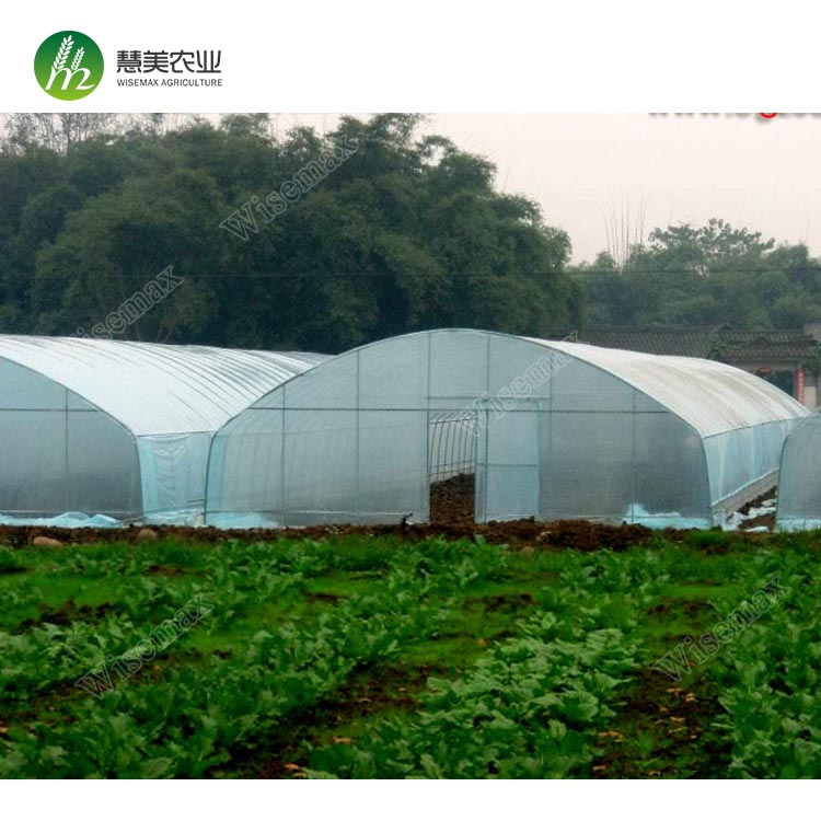 Hot dip galvanized steel pipes agriculture sawtooth tropical greenhouse