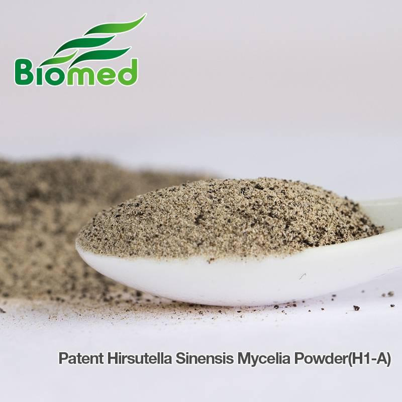 Hirsutella Sinensis Mycelia extract powder