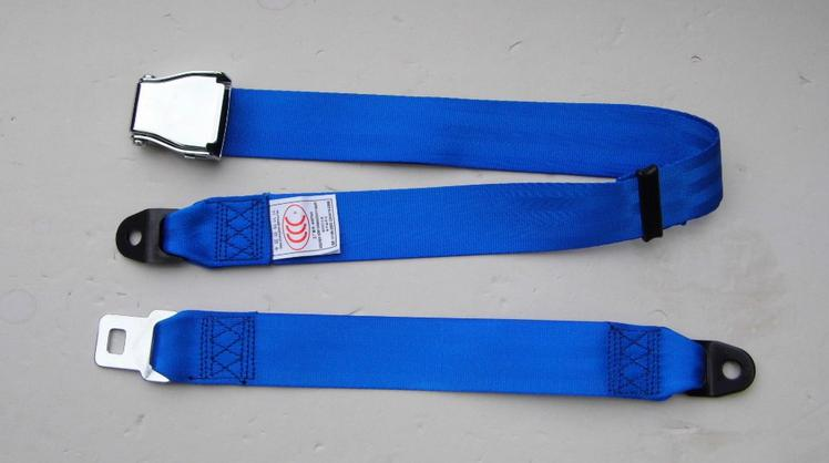 blue airplane 2 points seat belt