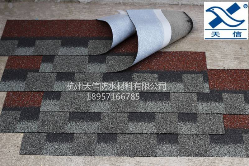 shingle roof product from China supplier