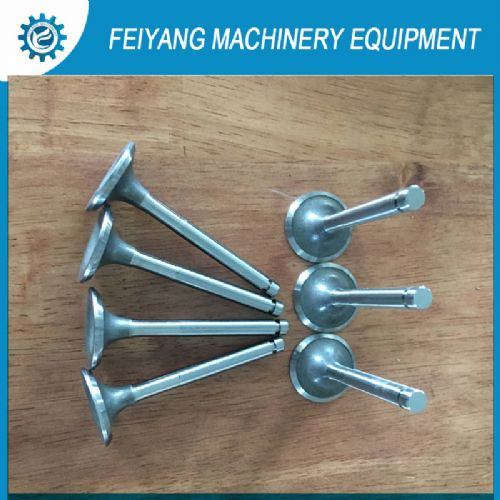 customize intake valve/exhaust valve for mower/bus/truck/tractor