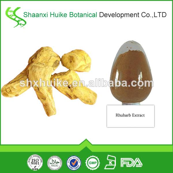 100% natural Rhubarb Root Extract Chrysophanol/Rhein
