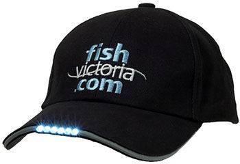 baseball cap/sport cap/golf cap/LED CAP