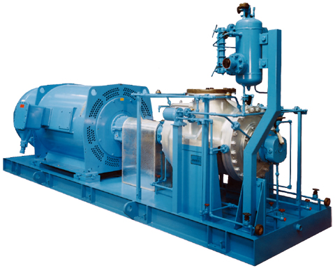 VBBS-T horizontal two-stage single-suction pumps