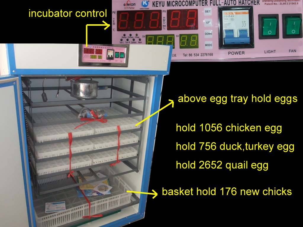 small egg incubtor for  chicken,turkey