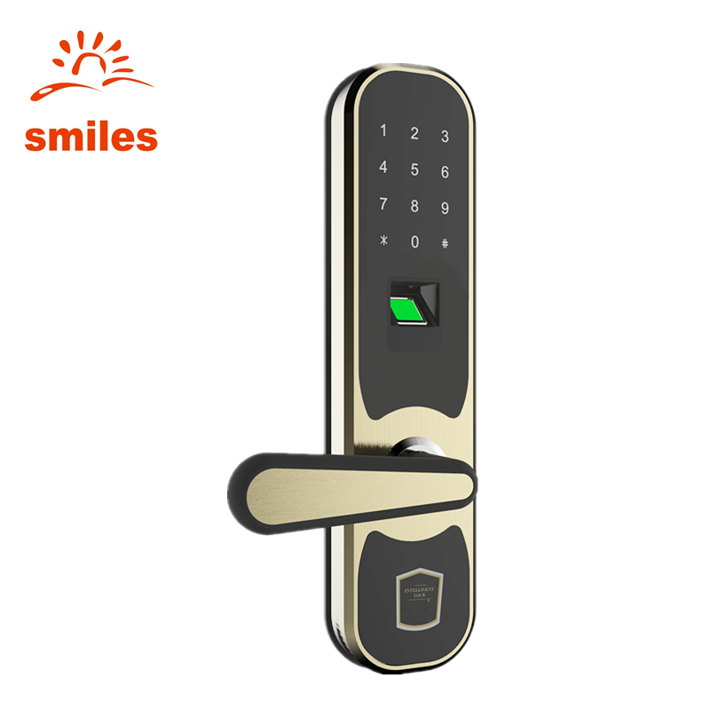 Intelligent Zinc Alloy Fingerprint Lock For Door With Password