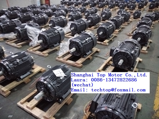 TC series IE1/IE2/IE3/IE4 casting iron housing three phase electric motor TECHTOP motor