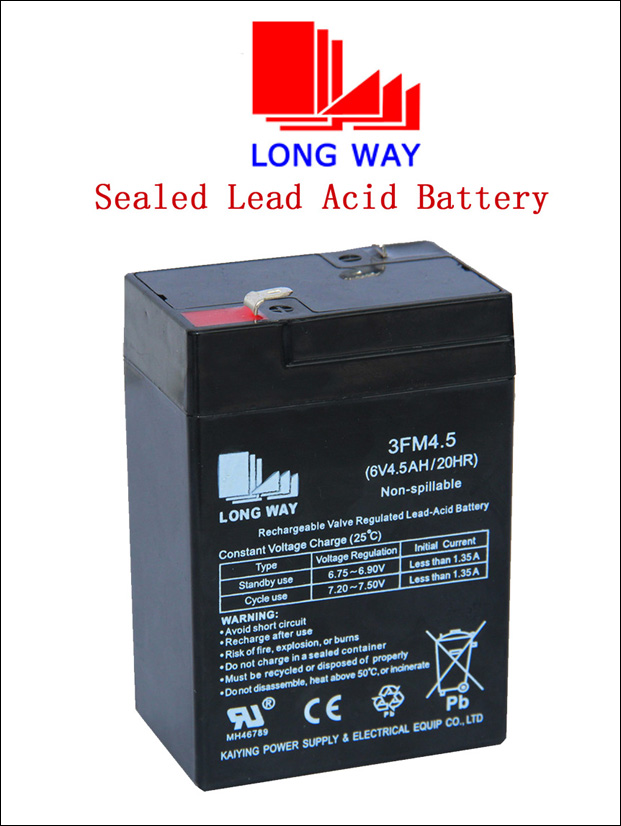 6V4.5 for Alarm System Re-Chargeable AGM/Sealed Lead Acid Battery