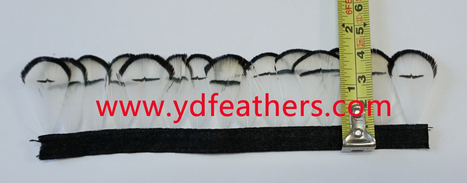 Pheasant Feather Trims Fringe with Satin Ribbon Sewing Crafts Costumes Decoration