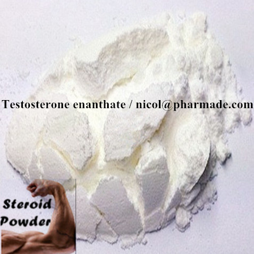 Testosterone Enanthate Producing Larger Muscles Anabolic Steroid Powder