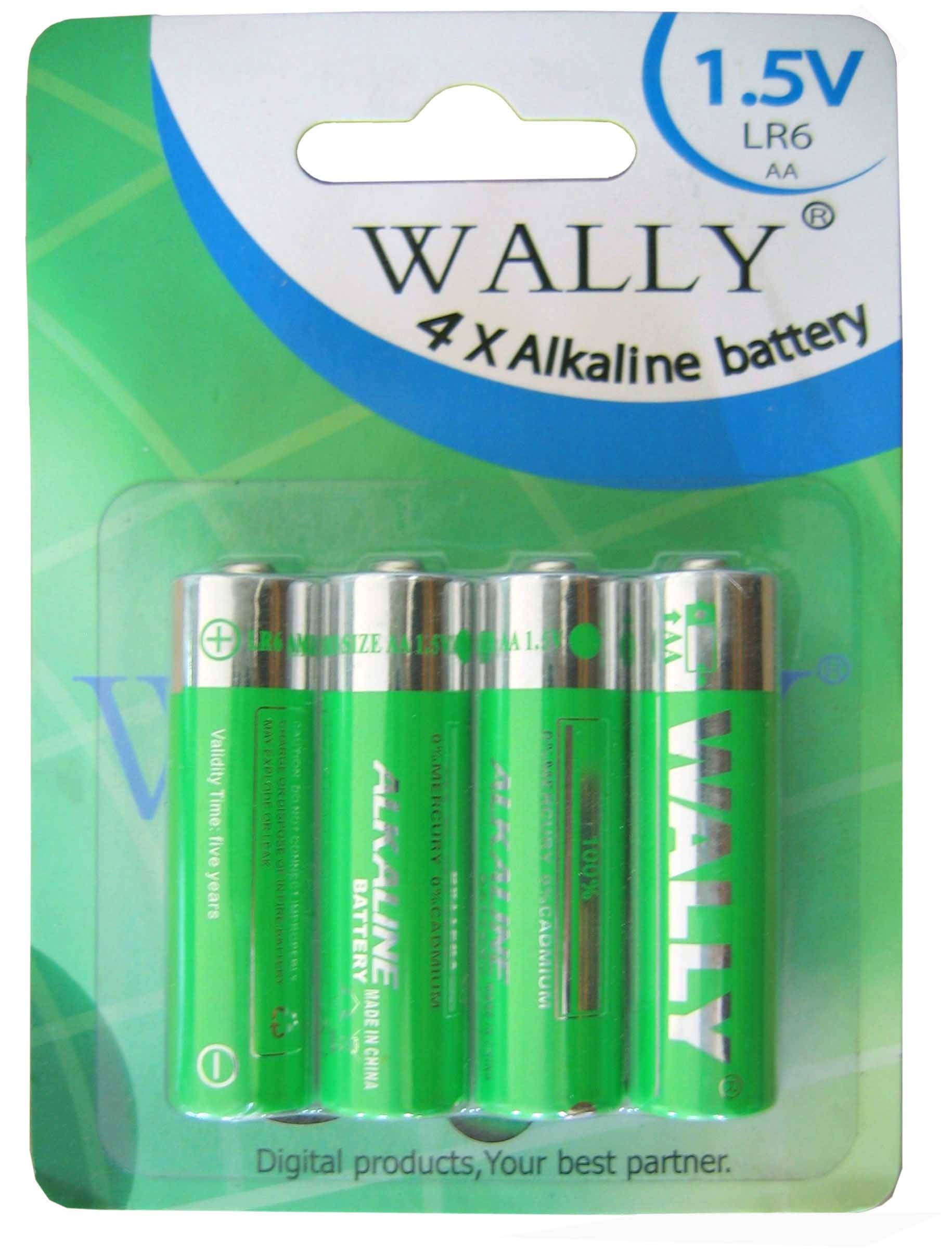 AA AAA carbon battery R20