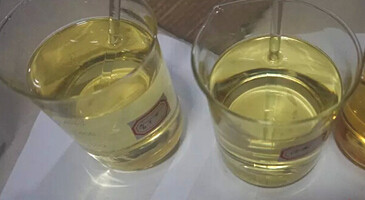 Oily Steroid Liquid USP Equi Test 450mg/ml Injectable Semi Finished