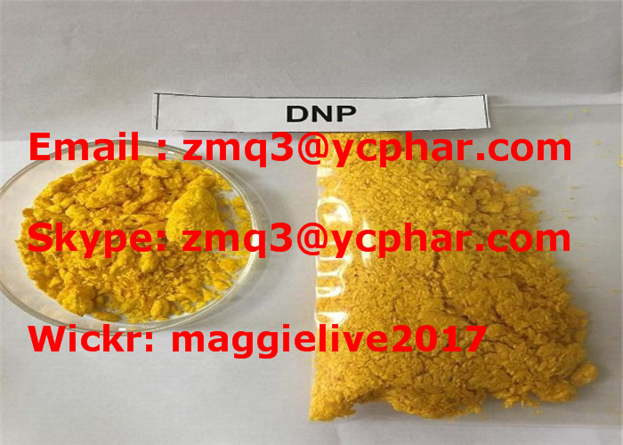 Powder 2,4- Dinitrophenol DNP Anabolic Steroids Weight Loss for Obesity , CAS 51-28-5