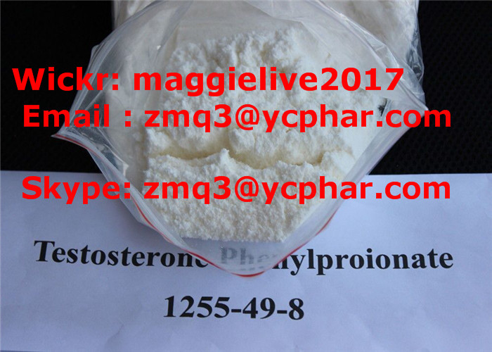 Top Quality Steroid Testosterone Phenylpropionate Powder Wholesale CAS: 1255-49-8