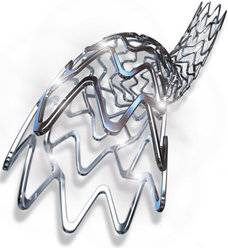 Coronary Stent System (DES stents and BMS stents)