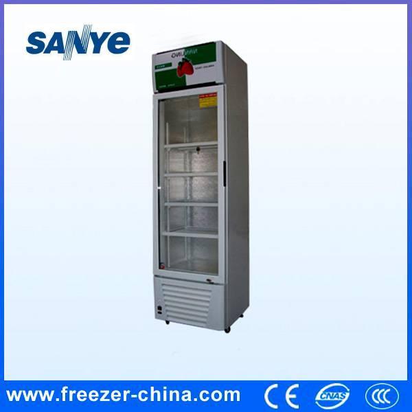 Glass Door Display Freezer/Energy Drink Fridge, Beverage Cooler, Refrigerator