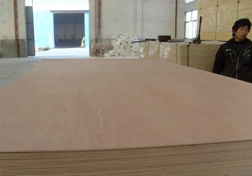 Best commercial bintangor plywood manufacturer