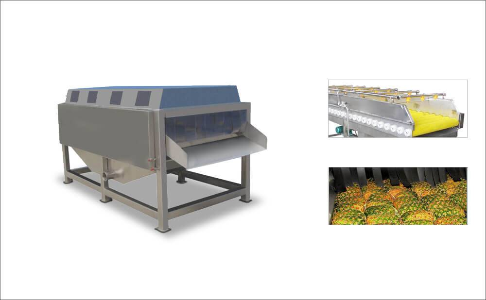 Vegetable Fruit Bush Spraying And Washing Cleaning Machine For Industrial Purpose