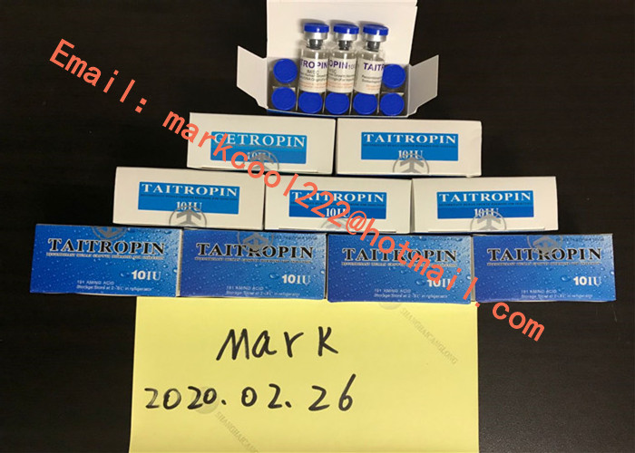 99.5% Purity Taitropin , Muscle Building Legal Human Growth Hormones Anti aging