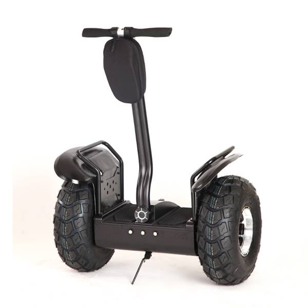 Two Wheel Self Balance Electric Scooter Golf Gart/Mobility Scooter CE Approval