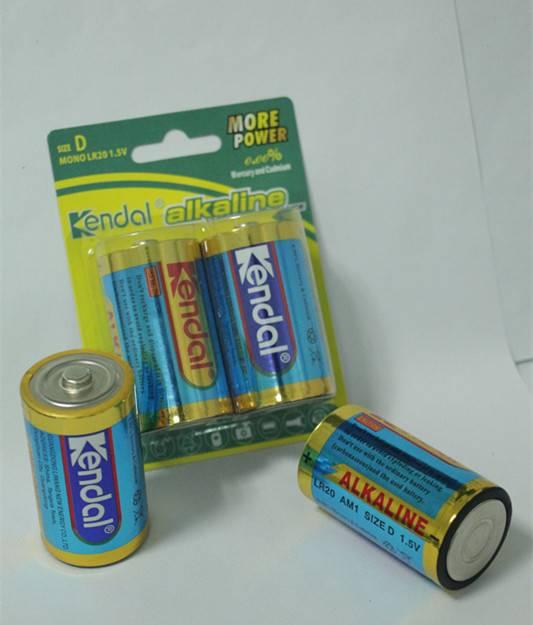 LR20 D alkalien battery from China manufacturer