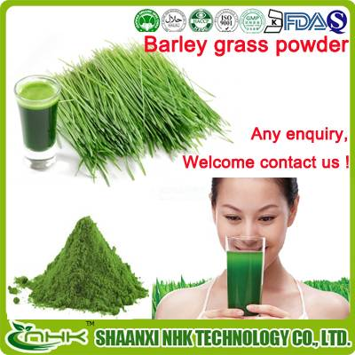 GMP factory supply 100% natural organic water soluble barley grass powder/ Barley grass extract