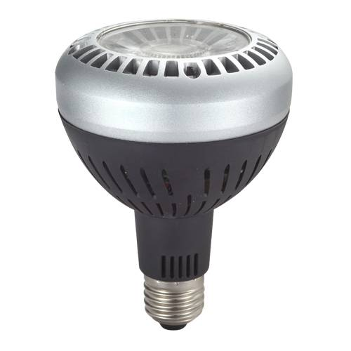 LED PAR30 (SPOT LIGHT)
