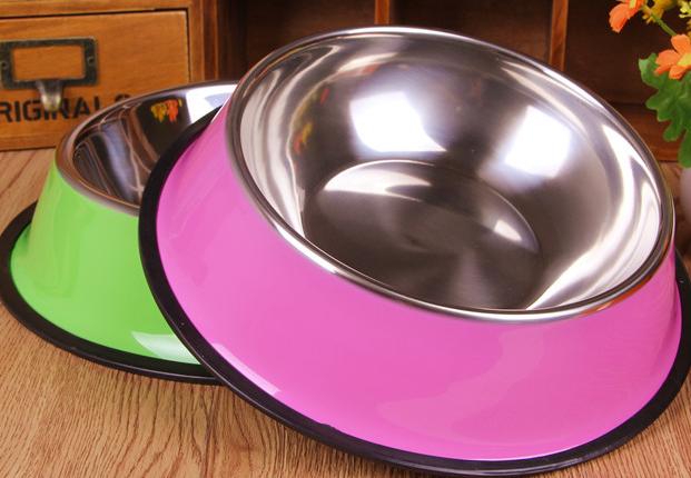 Pet Feeding Pet Feeder Pet Feeding Bowl Pet Feeder