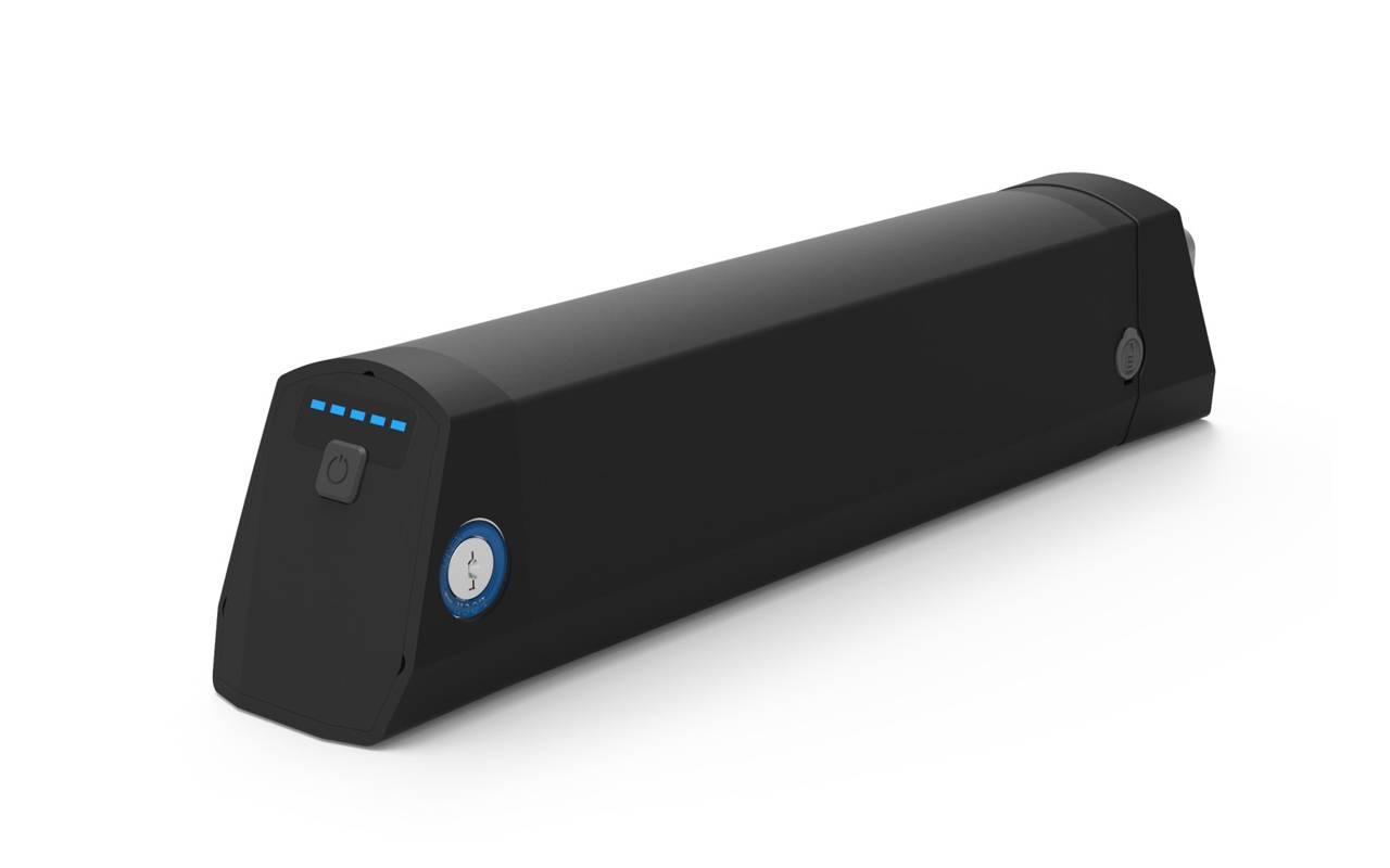Li-ion 36V 8.8Ah Battery Pack for E-Bike