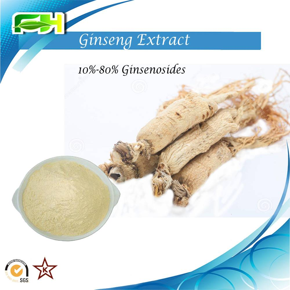 Factory Supply Ginseng extract Ginsenosides