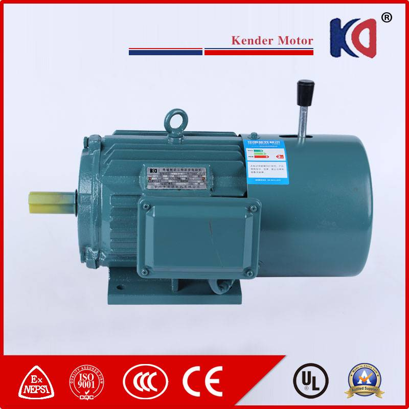 AC Asynchronous Brake Motor with Cast Iron Housing