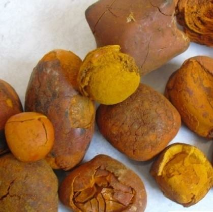 Ox Gallstones _ Cow Gallstones_ Cattle Gallstones