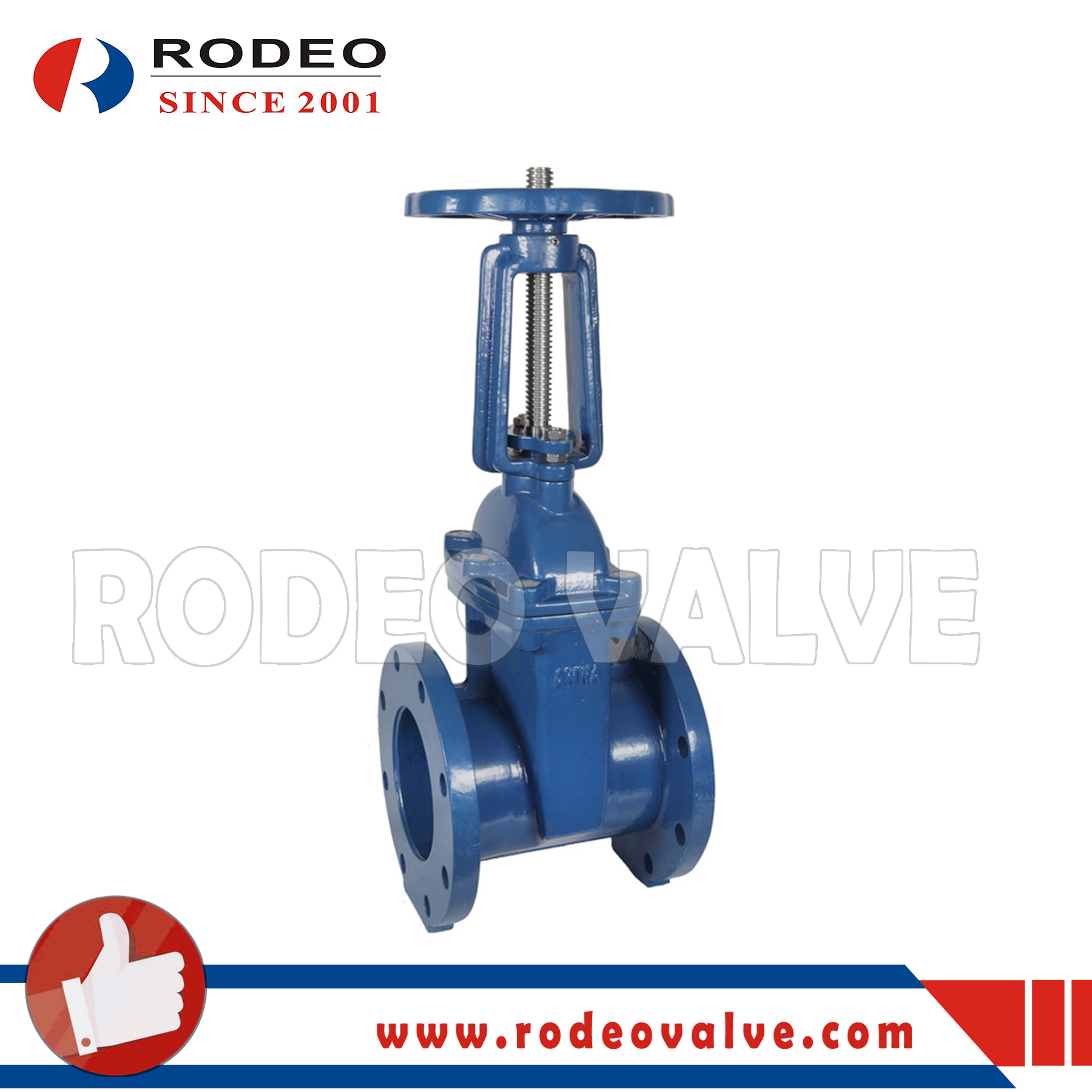 ANSI Cast Iron Flange Gate Valve