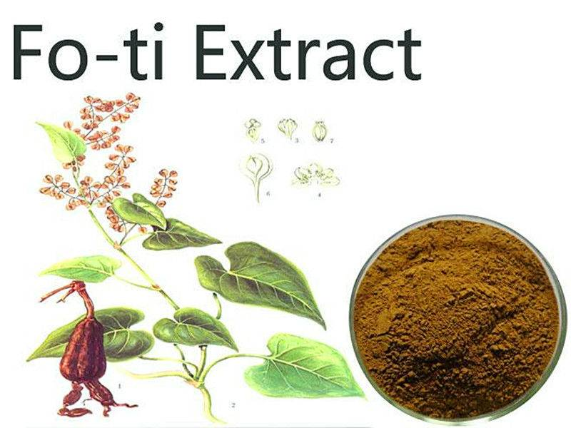 High qality He Shou Wu, Fo-ti Extract from GMP manufacturer